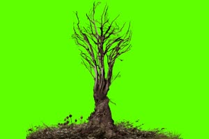 移动树 万圣节 恐怖 鬼魂 绿屏素材特效牛