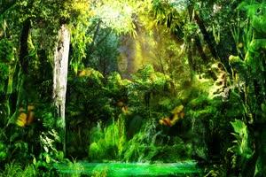 唯美森林 巧影 AE 背景素材