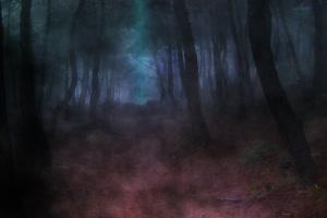 极品背景 黑暗的森林 万圣