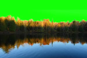 河流 自然绿屏抠像素材