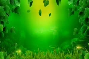 绿色藤蔓唯美梦幻 高清背景素材MP4 在线下载
