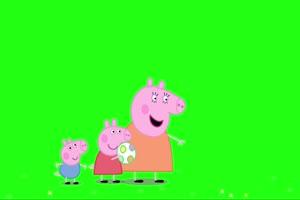 小猪佩奇 踢足球 绿屏抠像 巧影AE素材 特效牛