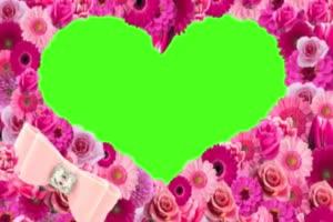 情人节 爱心 520 七夕节 浪漫表白 绿屏抠像素材