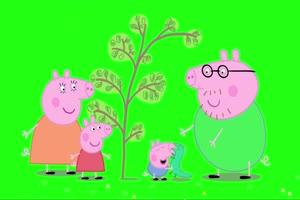 小猪佩奇 植树节 绿屏抠像 巧影AE素材 特效牛