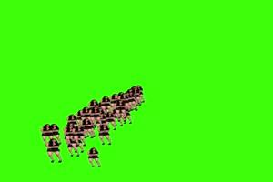 天降美女 绿屏版 专为帝国