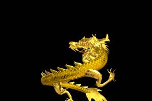 中国龙 金龙飞舞  3 透明通道 免抠像 超清