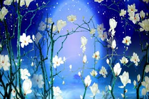 蓝色玉兰花月亮 背景素材 中秋节素材