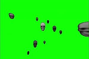 骷髅头 骨骸 绿屏绿幕 抠像素材
