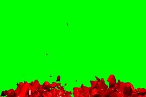 爱心破碎 合在一起 绿屏抠像特效素材绿幕AE教程