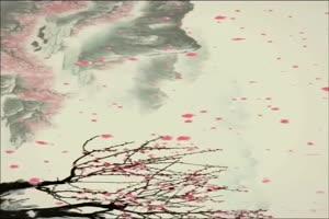 背景视频12 巧影素材 竖版特效
