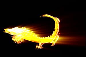 中国龙 金龙飞舞 龙 盘旋 透明通道 免抠像 超清