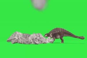 绿屏抠像巨型背甲龙 恐龙
