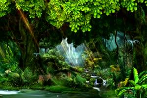 唯美森林 8 巧影 AE 背景素