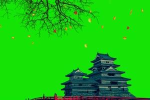 中国建筑  国庆节 绿屏抠