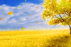 金色田野 大树 高清背景素材MP4 在线下载