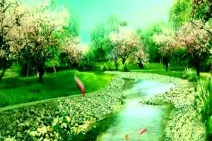 绿树河水 高清背景素材MP4 在线下载